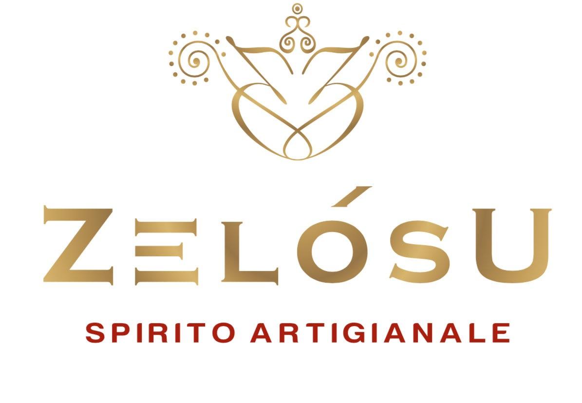 Zelosu - DPSolution